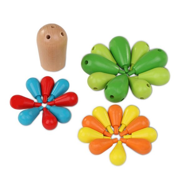 Cactus wooden toy pieces matched by size.